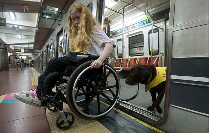 service dog nyc subway